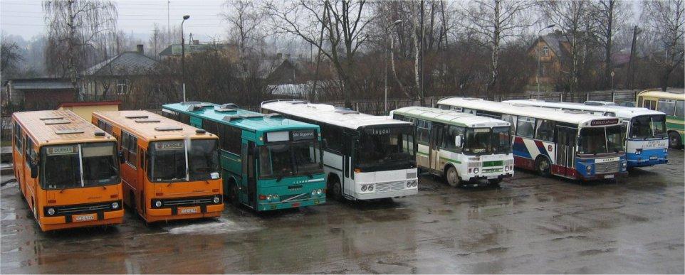 Et utvalg av vognparken til Dobeles Autobus Parks i Latvia